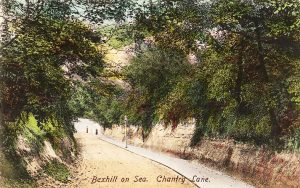 chantry-lane-1905
