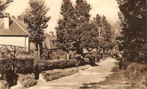 pear-tree-lane-little-common